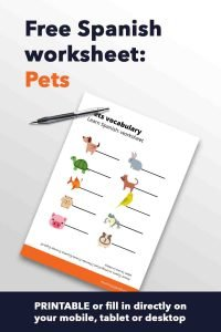 Spanish worksheet Pets